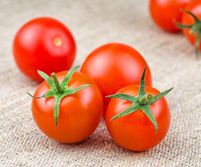 رب گوجه فرنگی منجی