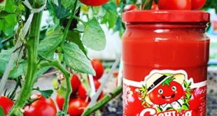 رب گوجه فرنگی شیشه ای با وزن 1550 گرم