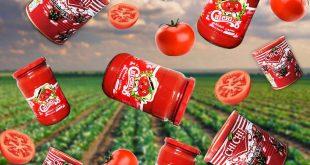 رب گوجه فرنگی درجه یک ایرانی