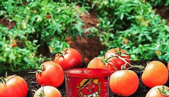 رب گوجه قوطی چی چی لاس